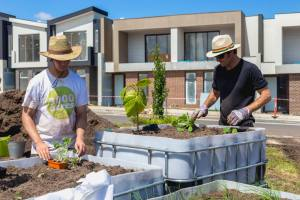 Building the 3000 Acres community garden in Bundoora, near La Trobe University.