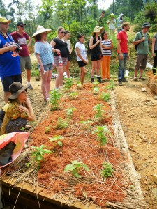 Members of my 'Environment and Sustainability in China 2015 Study Tour' group learning about raised garden beds at Hangzhou permaculture farm