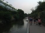 Walking the Cheonggyecheon.