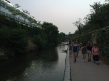 Walking the Cheonggyecheon.