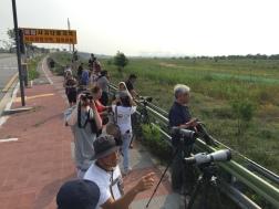 Observing endangered migratory birds in Incheon.