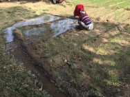 Opening and closing the hand-dug irrigation channels.