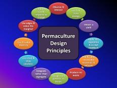 Permaculture design principles.